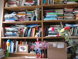 cluttered-bookshelves